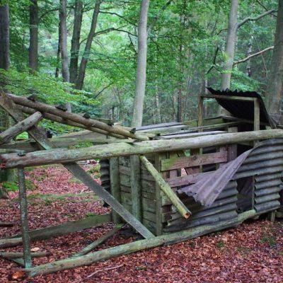 Reviereinrichtung - was ist versichert? Jagdfakten Österreich