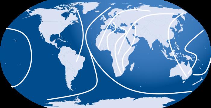 Zugvogelrouten Weltweit