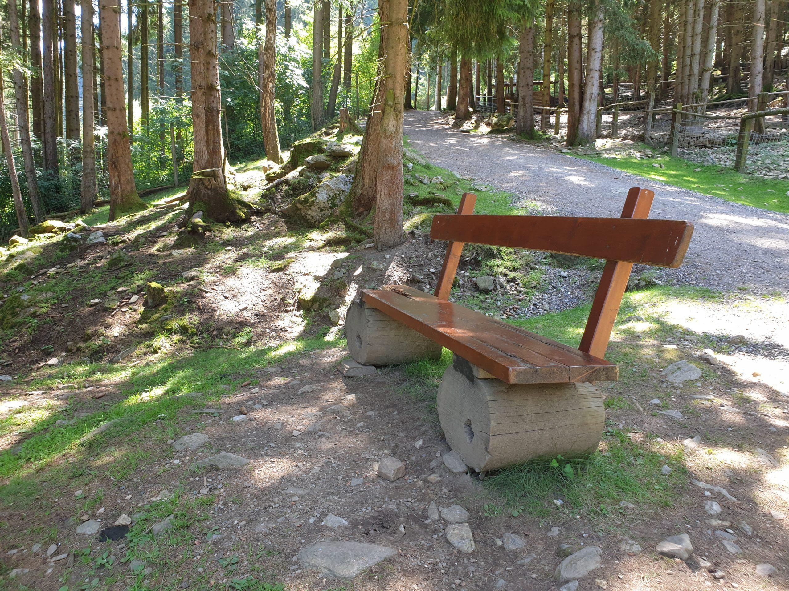 Freizeittipps Nationalparks in Österreich, Wildpark Feld am See, Jagdfakten.at