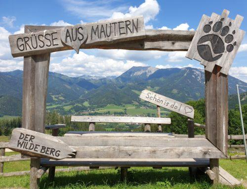Fünf Freizeittipps für Natur- Wild- und Nationalparks