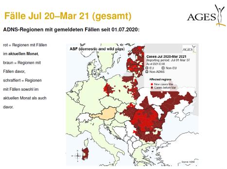 Afrikanische Schweinepest, AGES Bericht - Jagdfakten.at informiert
